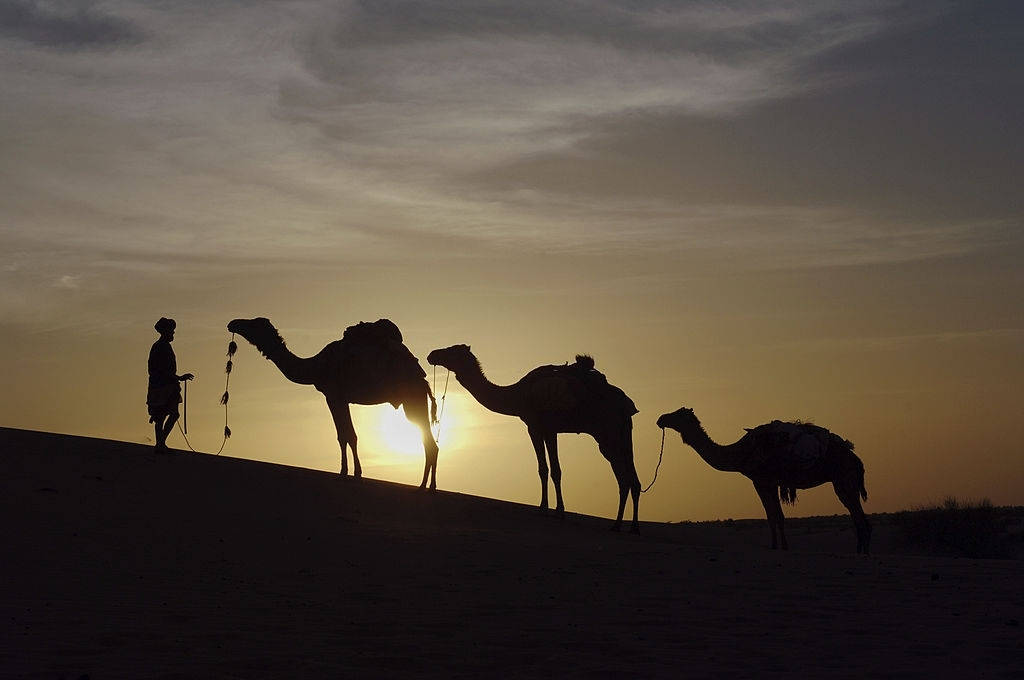 """""""A nomad with his camels in silhouette against the bright setting sun - Sahara Desert dunes, Timbuktu in Mali, West Africa"""""""